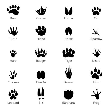 Different footprints of birds and animals. Vector monochrome pictures on white background Illustration