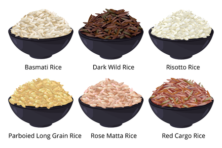 Verschillende soorten rijst. Lange korrel, bruin, wit en andere. Vectorillustraties in cartoon stijl Vector Illustratie