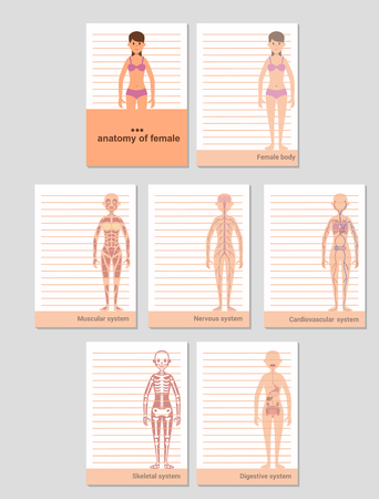 Notepad for A6 format records. Anatomy of the female body