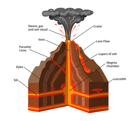 Vector infographic illustration. Cross section of volcano