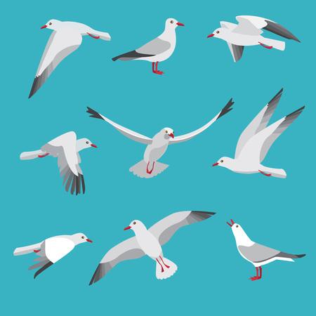 Atlantic seagull in different action poses. Cartoon flying birds seagull posing, wildlife mascot character. Vector illustration Illustration