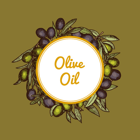 Vector hand drawn olive branches with place for text