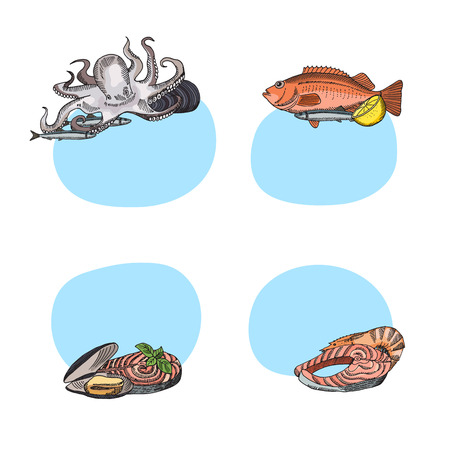 Vector stickers hand drawn seafood