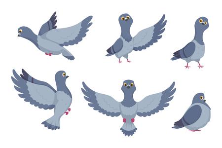 Collection de vecteur de pigeons de dessin animé. Illustration d'oiseau animal, colombe avec des ailes en vol