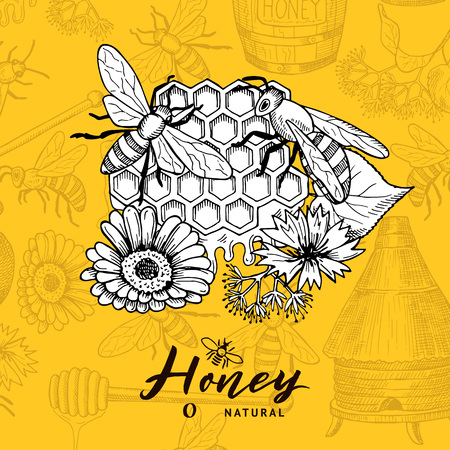 Vector background with sketched contoured honey theme elements and place for text