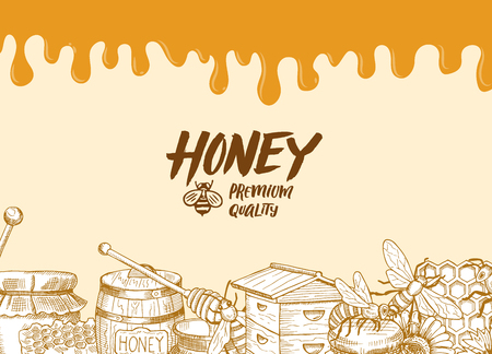 Vector background with sketched honey elements, dripping honey. Ilustração