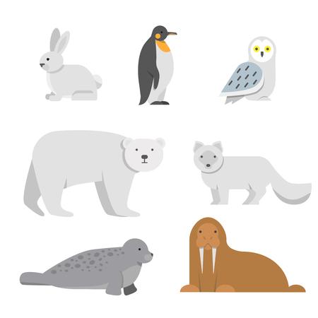 Vectorillustraties van arctische sneeuwdieren. Arctische beer en pinguïn, noordwalrus en uil