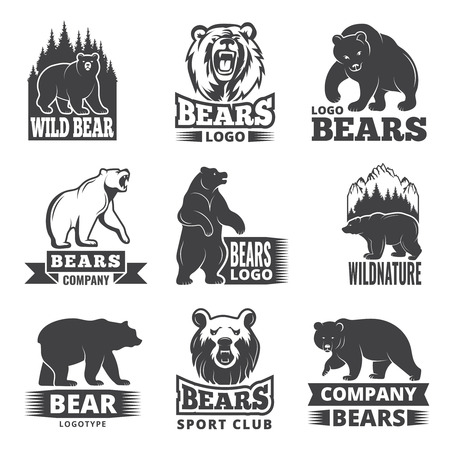 Sport labels with illustrations of animals. Pictures of bears for logo design Vector illustration.