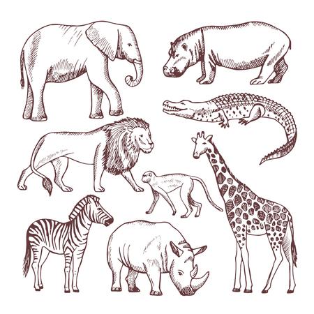 Different animals of savana and africa Ilustrace