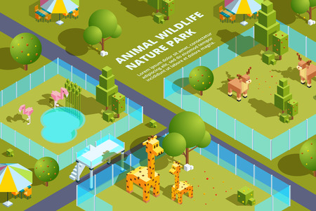 Landscape of zoo with various animals. Stylized vector isometric illustrations