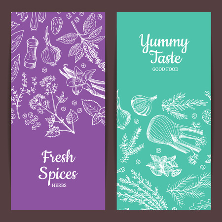 Vector hand drawn herbs spices banners illustration Stock Illustratie