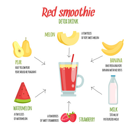 Cocktail infographics. Various smoothie ingredients. Dink fruit shake, fresh beverage illustration vector