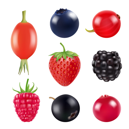 Set of berries. Realistic pictures of fresh fruits and berries isolate on white