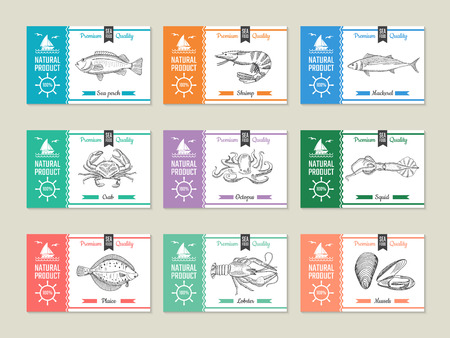 Seafood labels. Design template with hand drawn illustrations of fish and other seafood shrimp and mackerel, perch and squid, octopus and crab vector Illustration