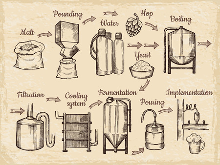 Fasi di produzione della birra. Immagini disegnate a mano del birrificio. Fabbrica di birra di vettore, processo di bevanda alcolica, illustrazione dell'attrezzatura per la produzione di birra