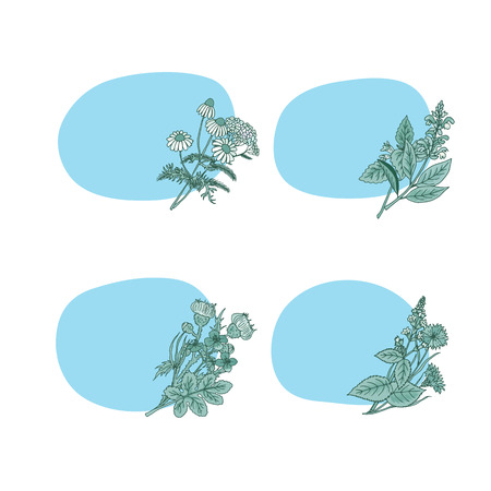 Vector hand drawn medical herbs stickers with place for text set illustration Illustration