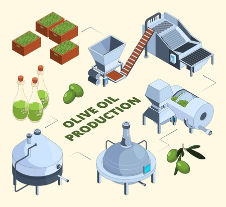 Olive manufacturing. Oil production processes plant food press industry farm tank centrifuge bottles. Vector isometric pictures. Olive oil production industry, fresh organic ingredient illustration