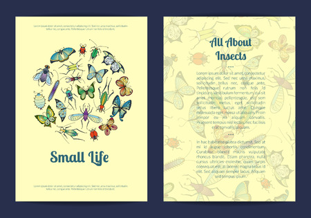 Vector hand drawn insects card or flyer template banner illustration