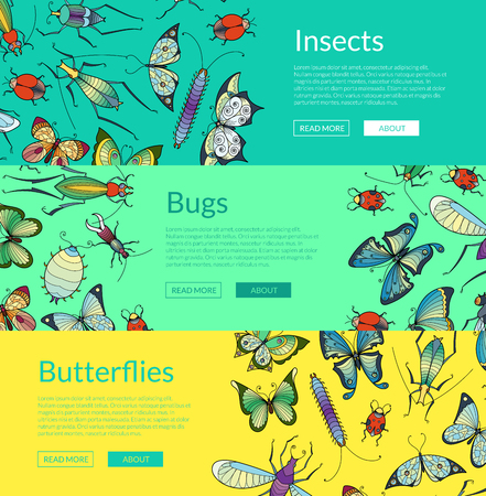 Vector hand drawn insects web banner and poster templates illustration