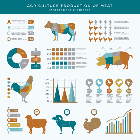 Agriculture farming infographic. Food animals farm technology nutrition business infographic template table chart with place for text. Farm agriculture information, animal cow and sheep illustration
