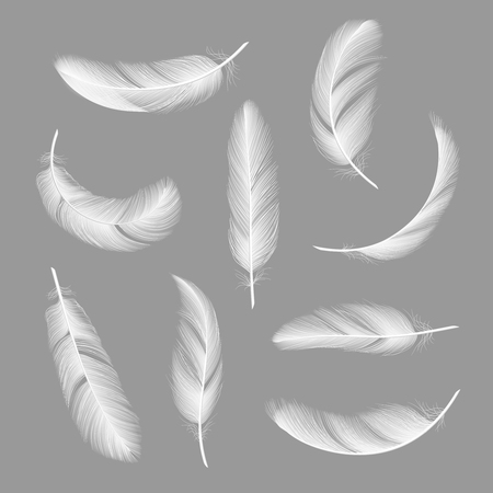 Feathers realistic. Flying furry weightless white swan objects vector isolated on dark background. Feather white flying and falling illustration 向量圖像