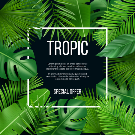 Leaves frame. Vector design template with nature green plants tropical picture with place for your text. Realistic exotic leaf green, jungle hawaii flora banner for sale illustration