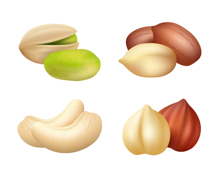 Nuts realistic. Mixed seeds dry food dried cashew vector pictures of nuts. Cashew and hazelnut, pistachio and almond, nutshell illustration Çizim
