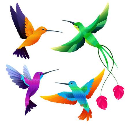 Hummingbirds collection. Exotic tropical little birds flying vector cartoon set. Illustration of exotic animal, colored bird hummingbird