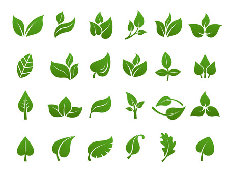 Green leaves logo. Plant nature eco garden stylized icon vector botanical collection. Green leaf and eco botanic label illustration