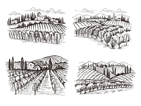Vigneto. Illustrazioni vettoriali disegnate a mano del paesaggio del vino del vecchio castello della Francia per progetti di design di etichette. Paesaggio della cantina, azienda agricola dei vigneti