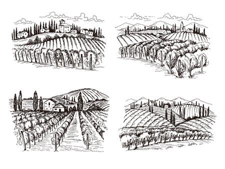 Wijngaard. Oude Frankrijk kasteel wijn landschap hand getekende vectorillustraties voor labels ontwerpprojecten. Wijnlandschap, wijngaard boerderij