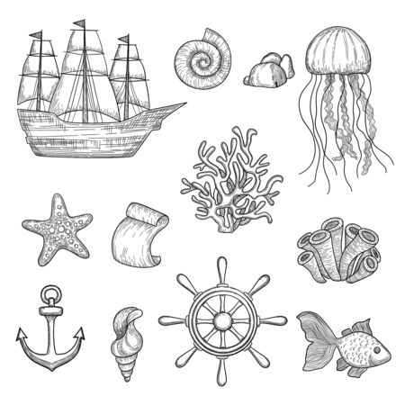 Nautical elements. Ocean fish shells boats ships knot travel marine symbols vector hand drawn collection. Ocean and sea marine elements, boat and shell illustration