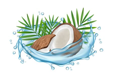 Coconut water vector concept. Realistic coconut, water splashes and palm leaves. Illustration coconut with water, exotic fresh coco Illustration
