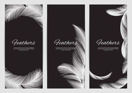 Feathers banners template. Realistic white swan falling feathers vector background. Promo banner and poster, lightweight realistic feather illustration  イラスト・ベクター素材