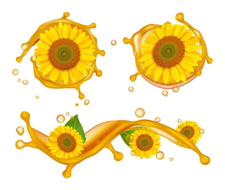Sunflower oil. Realistic sunflowers, oil splashes and drops vector illustration. Sunflower and drop oil splash, natural organic gold liquid