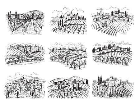 Vineyard landscape. Farm grape fields with houses agricultural hand drawn vector illustrations. Farm vineyard, landscape field agriculture Vektoros illusztráció