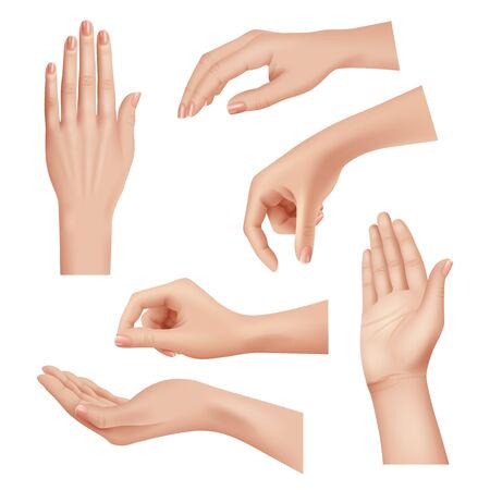 Hands gestures. Female caring skin palm and fingers nails woman cosmetics hands realistic closeup vector. Palm hand woman, fingers girl position different illustration 写真素材 - 133630591