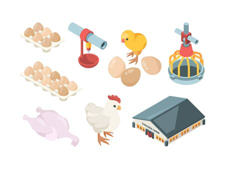 Chicken production. Agriculture industry bio organic bird feeding poultry workers and farm buildings vector isometric. Illustration farm agriculture, chicken egg and poultry 向量圖像