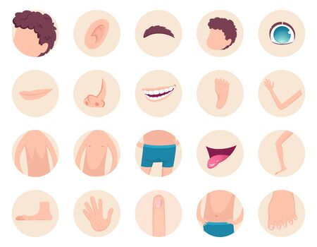 Body parts. Human anatomy head legs fingers nose hands back belly vector fragments collection. Back and head human, foot and hand illustration