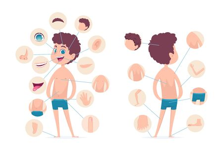 Boy body parts. Young human school male kid anatomy hands legs fingers head vector cartoon character. Human male body, finger and head, toe and knee illustration