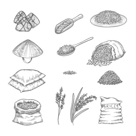 Doodle rice. Agricultural nature collection of rice sacks grains vector hand drawn set. Illustration rice grain, drawing natural cereal nutrition