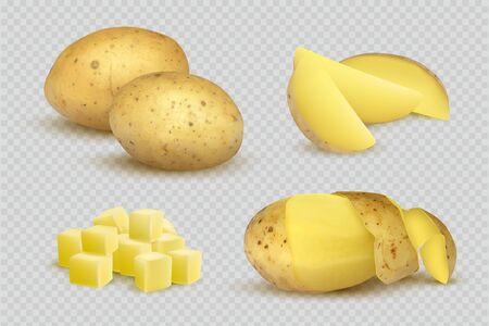 Potatoes realistic. Fresh natural eco vegetarian food slices of potatoes vector template. Vegetable potato, vegetarian product ingredient illustration