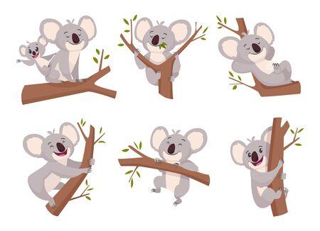 Koala bear. Wildlife cute furry animal from australia zoo characters cartoon shower symbols vector collection. Illustration koala mammal with eucalyptus, wild adorable happy bear