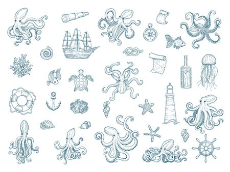 Marine illustrations. Octopus nautical set wild squid shells monster kraken vector hand drawn collection. Octopus monster, seafood and jellyfish illustration