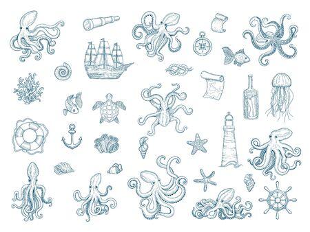 Marine illustrations. Octopus nautical set wild squid shells monster kraken vector hand drawn collection. Octopus monster, seafood and jellyfish illustration Ilustração