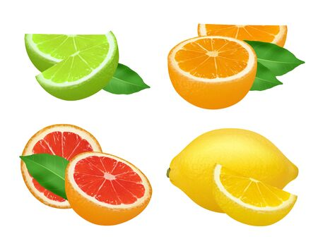 Citrus products. Lime lemon grapefruits and orange natural healthy fruits vector food realistic picture. Grapefruit and lemon, lime and citrus whole illustration Vettoriali