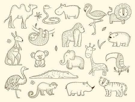 African wildlife animals. Jungle safari characters tiger elephant crocodile monkey vector set. Wildlife kangaroo and sloth, jungle and crocodile illustration