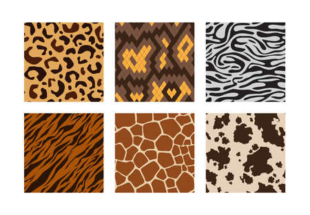 Animal skins. Pattern of african jungle animals leopard tiger zebra giraffe vector seamless backgrounds collection. Skin pattern african, seamless cheetah and leopard fashion illustration