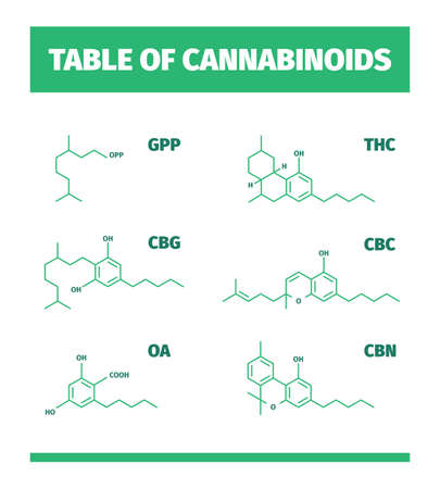 Cannabinoid structures. Molecular formula of cannabis drugs chemistry medicinal symbols vector infographics. Molecular formula chemical, structure chemistry compound illustration