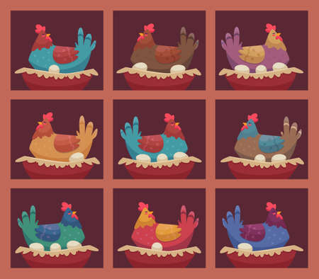 Laying hens. Chicken farm breeding hens birds sitting on shelves and making fresh eggs in farmhouse vector characters. Chicken farm agriculture, laying poultry on eggs illlustration